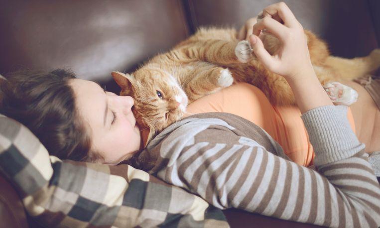 7 tekenen dat je kat van je houdt