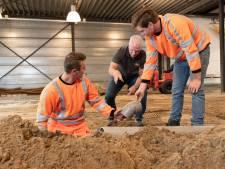 Oproep VNO-NCW aan  werkgevers in West-Brabant: kom met stageplekken