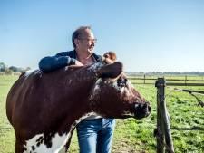 Nederland bestaat niet zonder koe