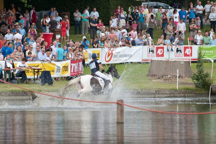 De paardenhappening in en rond het kasteeldomein Casier behoort tot de grootste in Vlaanderen.