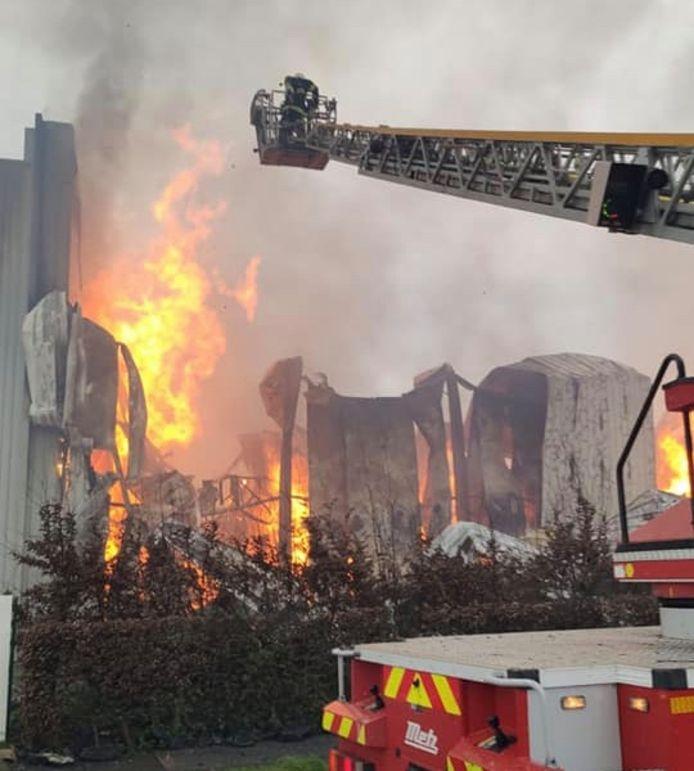 De brand ontstond woensdagmorgen in de gebouwen van het transportbedrijf Caillot, op de industriezone in Belle (Bailleul).