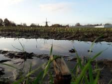 Verhuisplan voor bedrijven in Oisterwijk ontmoet tegenwind: oude buurtschap Kerkhoven verzet zich