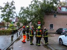 Boom waait tegen woning in Gouda, tientallen meldingen van stormschade in regio: 'Ze blijven binnenstromen'