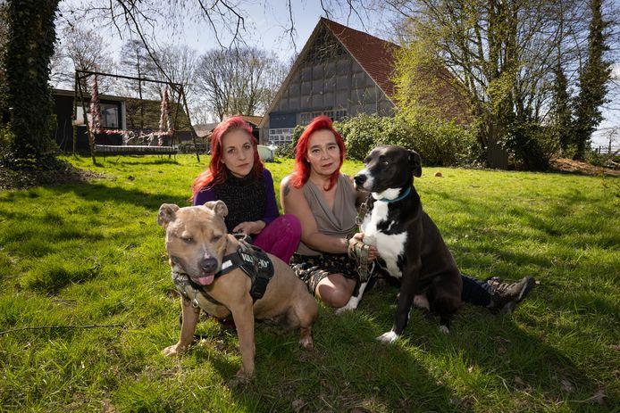 Chelsey van Minderhout (l) en Aris van Eck vangen honden op in hun opvang bij Tollebeek.