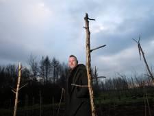 Gerben is geknakt nadat vandalen 100 jonge bomen molesteren: 'Dit is moedwillige vernieling'