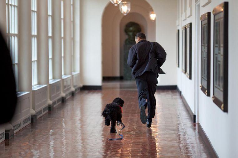 Obama rent door de oostelijke zuilengalerij van het Witte Huis met 'first dog' Bo. Beeld Pete Souza / The White House
