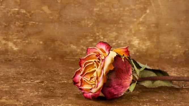 Man verkracht meisje na uitgangsavond en randt ander slachtoffer aan na 'romantisch' Valentijsbezoek met roos en ukelele