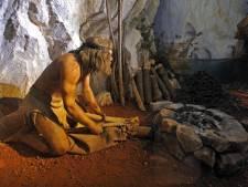 """La """"Galerie de l'Homme"""" inaugurée au Musée des sciences naturelles"""