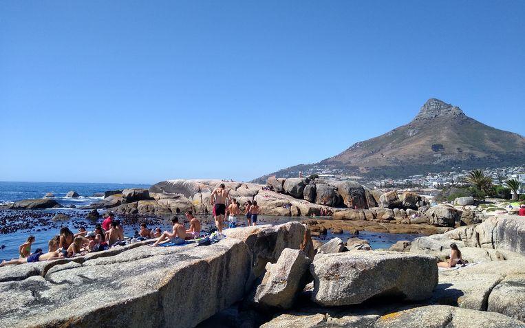 Groepen Zuid-Afrikaanse jongeren lagen dinsdag op het rotsstrand van Bakoven, even buiten Kaapstad, in de zon. Beeld Niels Posthumus