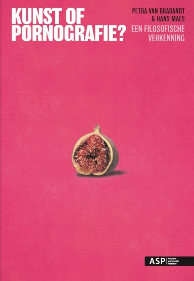'Kunst of pornografie?' van Petra Van Brabandt en Hans Maes. Beeld Auteur(s): Petra Van Brabandt en Hans Maes