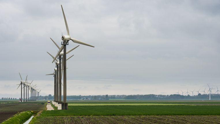 Windmolens bij Burgervlotbrug, in de gemeente Schagen Beeld anp