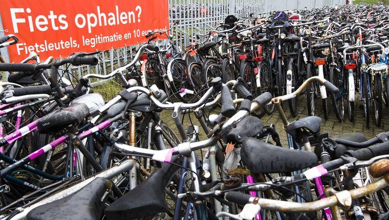 In beslag genomen fietsen in het depot in het Westelijk havengebied. Beeld anp