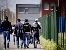 Gemeente de Wolden wil minder asielzoekers in Drenthe: 'Wij pleiten voor het principe 'fair share''