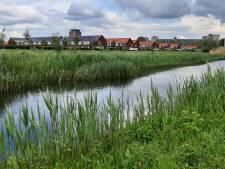 Buurt keert zich tegen gemeenteraad om oud bouwplan: 'We hebben hier al genoeg sociale huurwoningen'