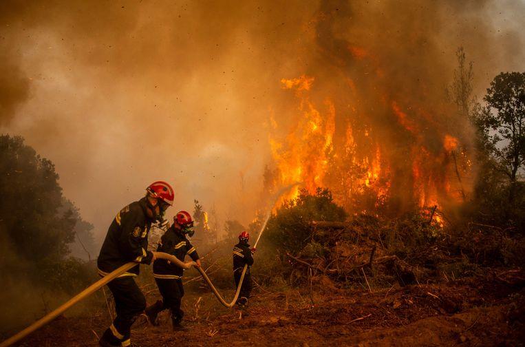 Brandweermannen bestrijden de aanhoudende natuurbranden op het Griekse eiland Evia. Beeld AFP