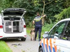Groep berooft man bij winkelcentrum Alexandrium: één verdachte (17) direct gepakt door politiehond Dandor