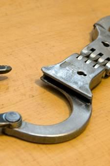 Verdachte uit Eersel verzet zich hevig bij arrestatie en bijt agent
