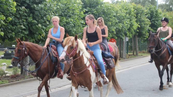 Bewegwijzerde paardenrally aan B&B Den Dotter