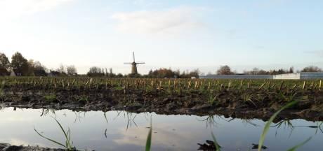 Bedrijventerrein bij Kerkhovense molen terug op de agenda in Oisterwijk