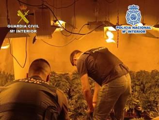 Drie Belgen opgepakt voor drugshandel aan Costa Blanca