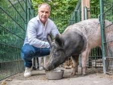 Horecaondernemer René Bogaart is nog lang niet van plan om te stoppen: 'Ik vind dit zo onwijs leuk'