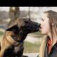 'Good Boys 3': 'Niet alle politiehonden gaan graag met pensioen'