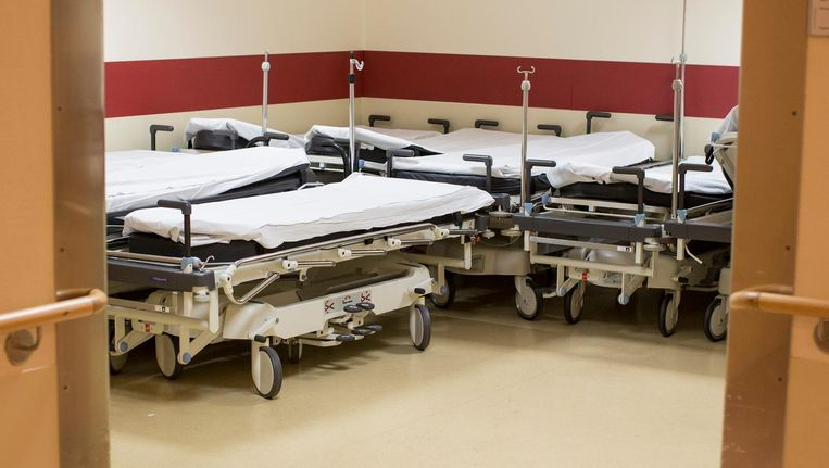 Arts en ict-deskundige Leonard Witkamp: 'Wij kunnen 50 procent van de verwijzingen voorkomen, maar geen enkel ziekenhuis wil dat.' Beeld Getty Images