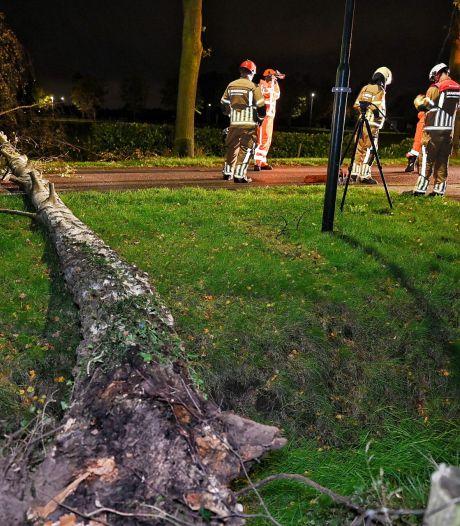 Zware windstoten laten sporen achter in Brabant: bomen op de weg