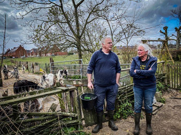 Het echtpaar Boink bij de Nederlandse Landgeiten, met achter zich wijk Den Bogerd (april 2020).