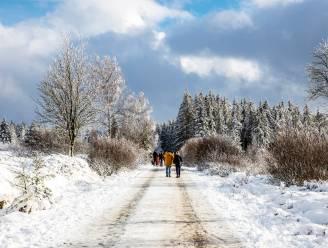 Nieuwjaarsdag met kans op enkele buitjes en lichte sneeuw in Ardennen