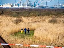 Lugubere ontdekking op strand Oostvoorne blijkt stoffelijk overschot van in 2013 vermiste Rotterdamse (36)