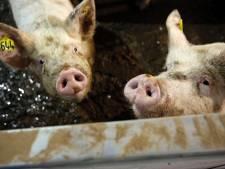 Biologisch boeren is in trek, aantal bioboeren stijgt in Brabant