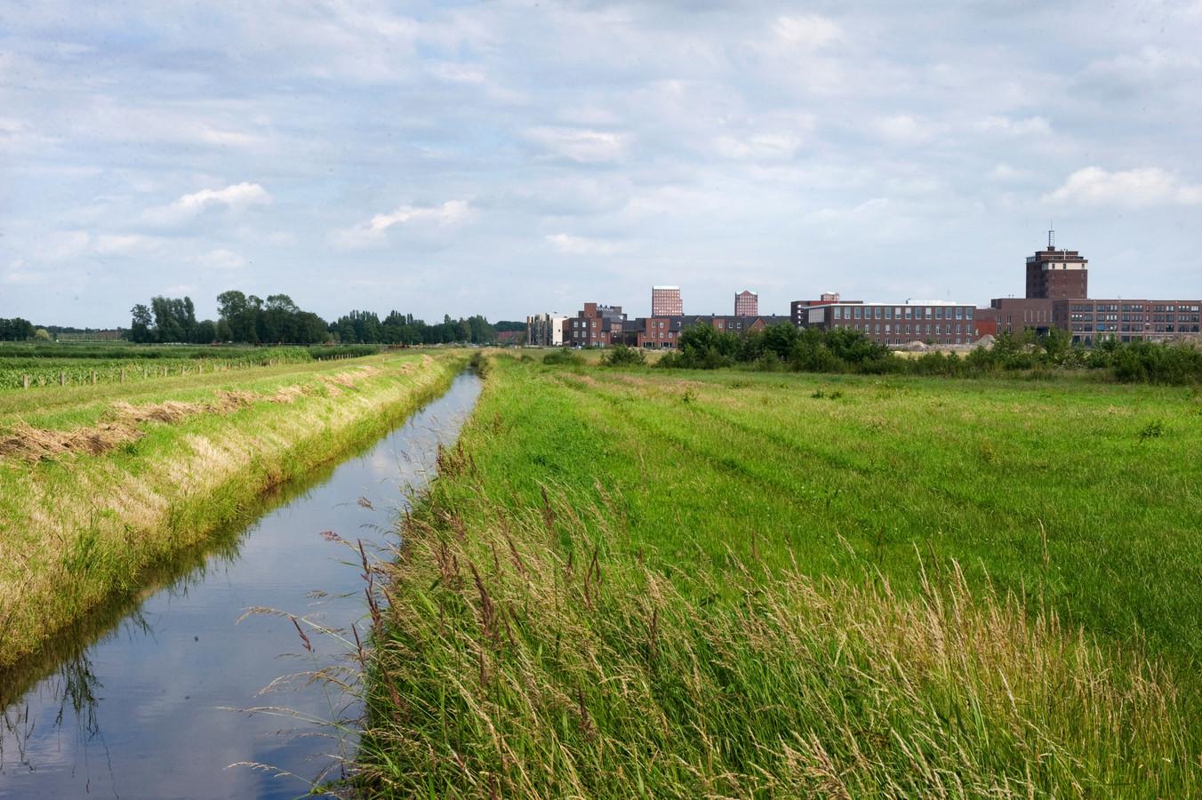 Vathorst-Noord, de plek waar een zonneveld is gepland.