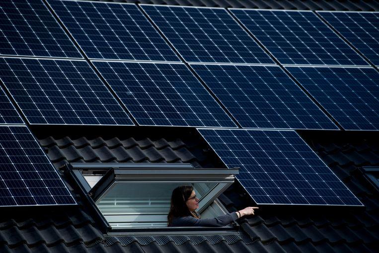 Sinds de subsidies voor zonnepanelen een duik namen, wordt er meer fraude gedetecteerd.  Beeld BELGA