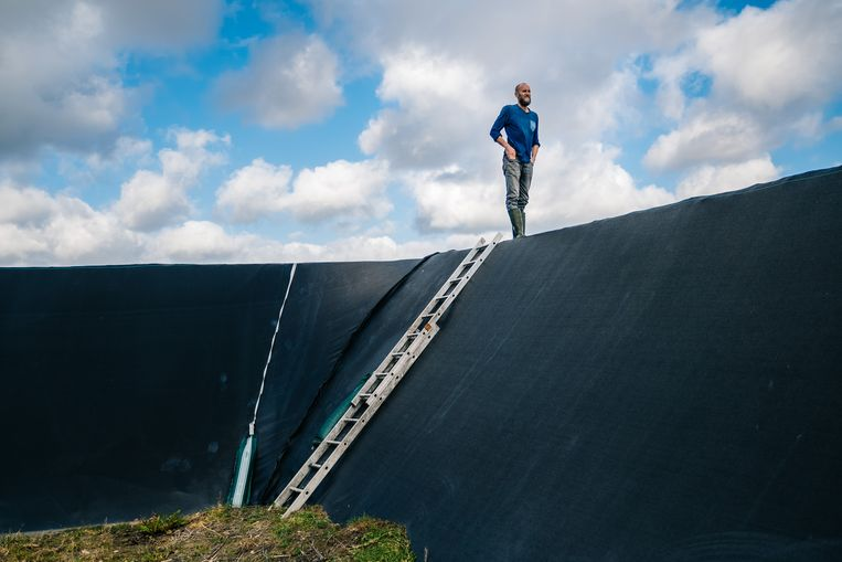 Stijn Van Hoestenberghe kijkt uit over het waterreservoir dat zijn bassins van water voorziet. Beeld Wouter Van Vooren