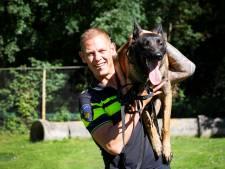 Politiehond Kees is de nieuwe 'schrik' van Den Haag