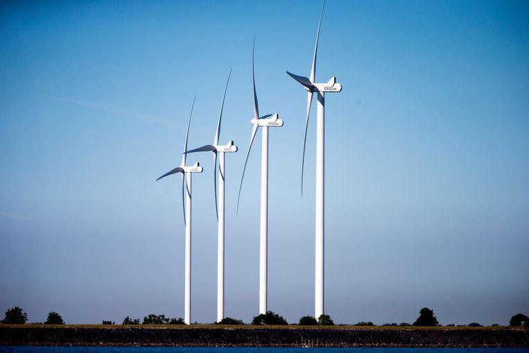 Liesbeth van Tongeren streed voor windmolens. Beeld anp