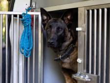 Politiehonden bij oefencentrum mogen blijven blaffen na vonnis rechter