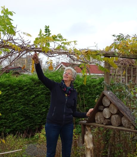'In botanische tuinen kun je veel inspiratie opdoen'