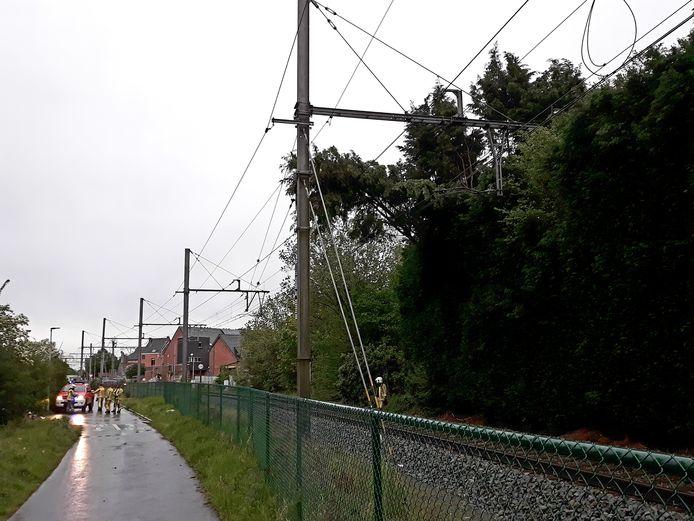 De boom knakte af en belandde op de bovenleiding van de spoorlijn