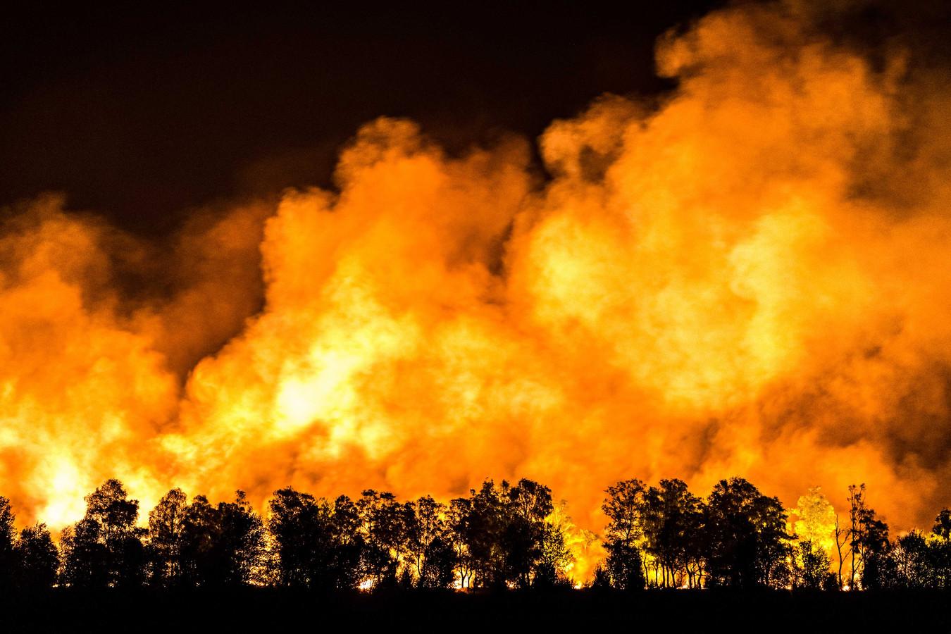 Vuurhaarden bij de zeer grote natuurbrand in de Mariapeel nabij Deurne.