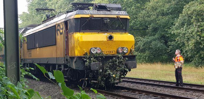 De trein bij Joppe na de aanrijding, de takken hangen nog aan de trein.