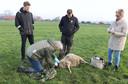 Een schapenhouder vond vijf van zijn dieren dood in een wei in Rosmalen. Zo'n vijftien andere schapen zijn gewond na een aanval van een wolf.