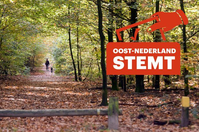 Er valt flink wat te kiezen op de Veluwe, want er staan de nodige inwoners van deze regio op het stembiljet.
