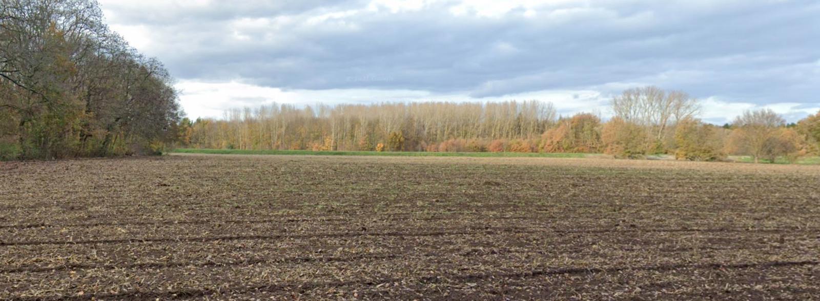 Het gebied aan De Meander van Vorsdonk.
