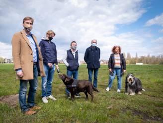 Kogel is door de kerk: bijkomende hondenspeelweide komt aan landschapspark Pallieterland