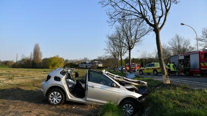 Brandweer bevrijdt bestuurster na ongeval