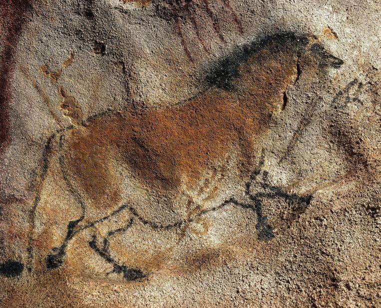 Reproductie van een prehistorische grottekening uit de Grotten van Lassaux, Frankrijk. Beeld Gamma-Rapho via Getty Images