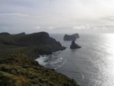 Commando's naar muizenplaag op eiland bij Zuidpool