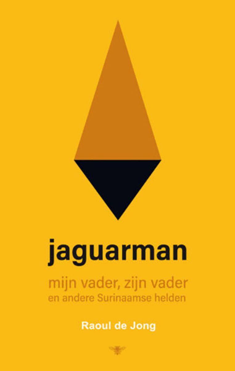 Raoul de Jong - Jaguarman Beeld
